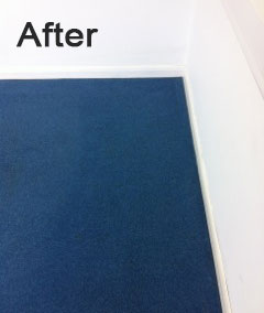 2-blue-carpet-after
